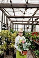 Portrait of a happy gardener holding pot plant in greenhouse