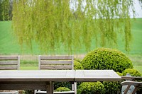 Table with chairs in a garden (thumbnail)