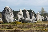 Standing stones, menhirs, in a row, Carnac, Département Morbihan, Brittany, France, Europe
