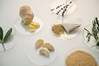 Studio Shot of various spices on petri dishes