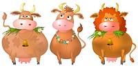 Cows, set