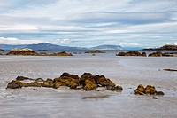 Rocks In The Water Along The Coast, Argyll Scotland