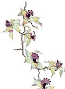 Image of my artwork with a orchid branch on white background