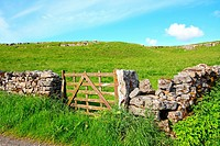 Beautiful landscape with stone walls, Yorkshire Dales, Malham, England , Great Britain