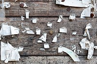 Detail of staples, thumbtacks and ripped paper on a wooden wall