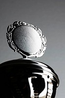 Close_up of a silver trophy with blank plaque surrounded by laurel wreath