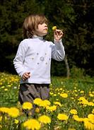 Kleines Mädchen und die Butterblume _ Frühling