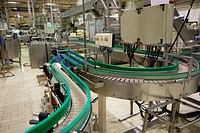 Production lines, Production line of canned vegetables and beans, Canning Industry, Agri-food, Logistics Center, Gutarra-Riberebro Group, Villafranca,...