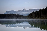 Mount Edith Cavell reflected in Leach Lake, Jasper National Park, UNESCO World Heritage Site, Alberta, Canada, North America