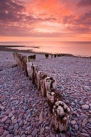 Weathered wooden coastal defences on Bossington Beach, Exmoor National Park, Somerset, England, United Kingdom, Europe