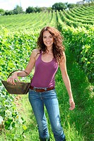 Winegrower woman stading in vine rows with basket of grapes