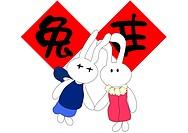 Happy new rabbit year