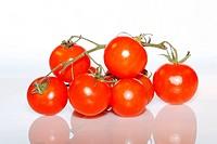 grossansicht tomate