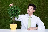 man touching leaves on the tree in the pot