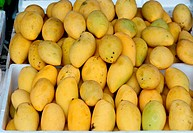 mango on the market