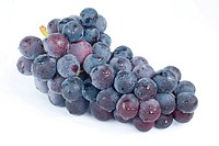 Grapes with drops, fresh fruit.