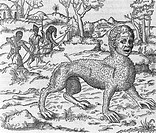 Mythical creature. 16th_century artwork of hunters attacking a ´thanacth´ mythical creature in the Calcutta region of India. The descriptions of this ...