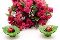 Ladybug and roses