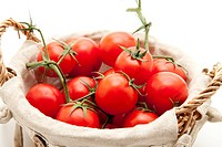 Shrub tomatoes in the basket
