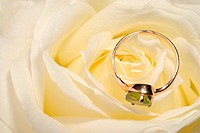 Ring in a white rose