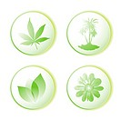 eco icon leaf