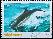 VIETNAM _ CIRCA 19805 : stamp _ animal whale