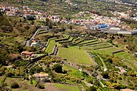 La Orotava Valley, Tenerife, Canary Island, Spain.