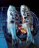 Fishes roasting