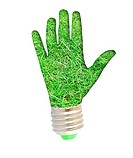 lightbulb _ hand with grass. Concept _ eco energy