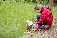 Elementary student collecting bugs on field trip