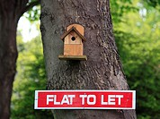 Flat to let sign below a bird nesting box, Worcestershire, England, Europe