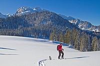 Skitourengeher beim Aufstieg zu einem Gipfel im Benediktenwandgebiet
