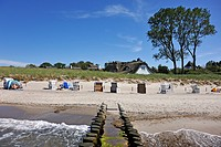 Roofed wicker beach chairs on a beach, a groyne in the foreground, houses with thatched roofs and poplars (Populus) at the back in the dunes, Ahrensho...