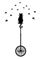 cat on unicycle with birds