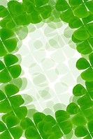 Green plant frame