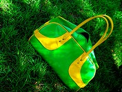 green summer bag on grass