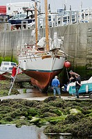 Man cleaning the hull of a yacht at low tide, Aberystwyth, Wales