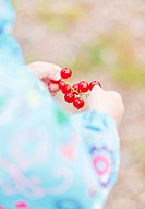 Child watching red currant branch