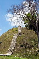 Steps to top of hill Maya ruin Altuna Ha, Belize, Central America, Western Caribbean Zone