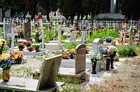 Graves at the Venice cemetery, Italy