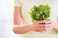 Woman holding fresh mint