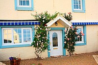Beautiful house with climbing roses