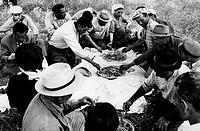 pausa pranzo durante la mietitura a san giorgio lucano, 1965