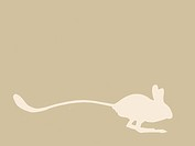 jerboa silhouette on brown background