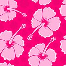 Hibiscus seamless background 3 _ picture illustration.