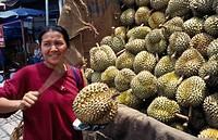 Durio zibethinus, Durian, Brown subject.