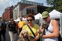 Maine, Portland, Congress Street, WCSH 6 Sidewalk Art Festival, artists, vendors, shopping, historic buildings, woman, dog, pet, holding,