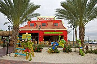 Senor Frogs in Aruba