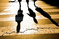 three shadows in a zebra crossing
