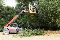 Farmer working on cherry picker